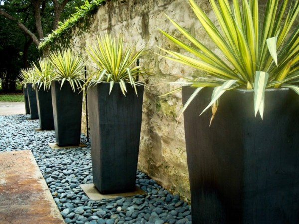 contemporary garden planters Your Backyard Landscaping Strategy: Manicured Or Untamed?