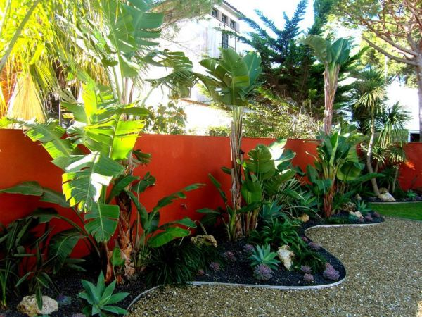 tropical outdoor patio 10 Beautiful Gardens with Tropical Plants
