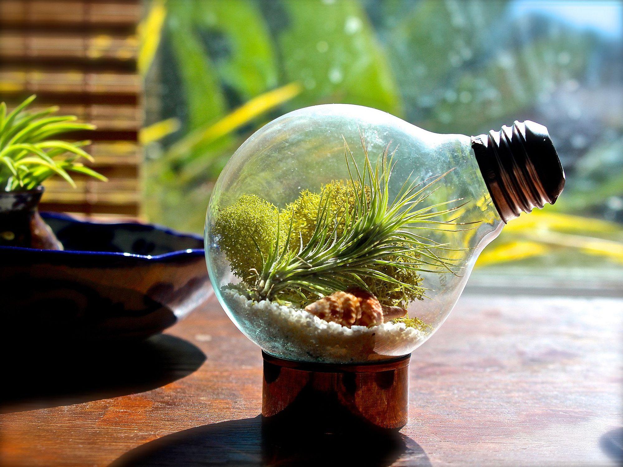 Design Your Own Garden Game