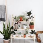 11 Diy Plant Stands For Greener And Cleaner Interiors