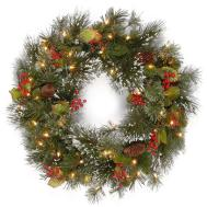 2ft Pre Lit Wintry Pine Artificial Christmas Wreath