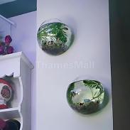2pcs Glass Hanging Plant Terrarium Flower Vase Fish Pot