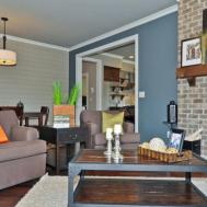 Accent Wall Ideas Living Room Doherty