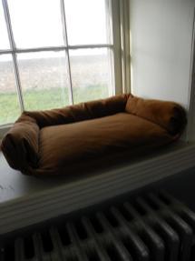 Allylynn Diy Dog Bed