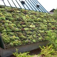 Awesome Green Roof Wikimedia Commons