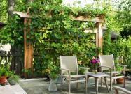 Backyard Privacy Ideas Ways Add Yours Bob Vila