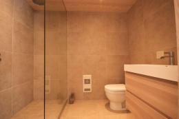 Bathroom Showers Walk Shower Suite