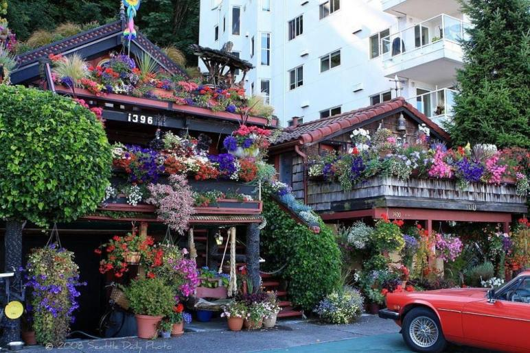 Beautiful Flower Houses