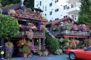 Beautiful Flower Houses