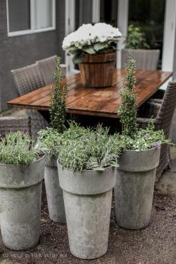 Best Tip Filling Large Outdoor Planters Much
