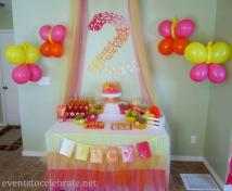 Butterfly Birthday Party Ideas Catch