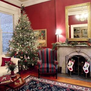 Christmas Decoration Storage Luxury Tree Living Room