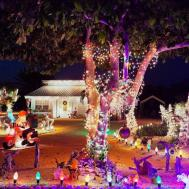 Colorful Outrageously Themed Outdoor Christmas