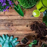 Creative Gardening Tips Spring Season Idaho