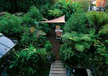 Design Shade Garden