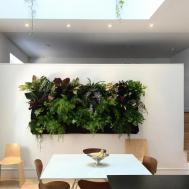 Design Trend Living Walls Outdoor Spaces Patio Ideas
