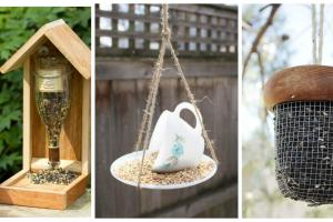 Diy Bird Feeders Fill Your Garden