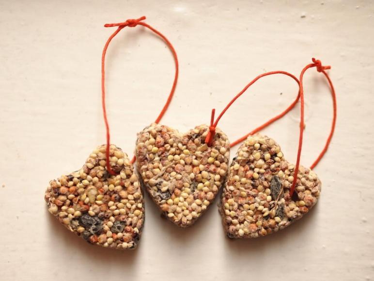 Diy Birdseed Ornaments Pink Stripey Socks
