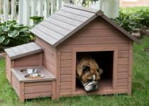 Diy Dog House Plans Beginner Ideas