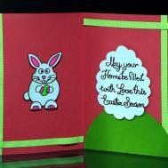 Diy Easter Cards Make Card Bunny