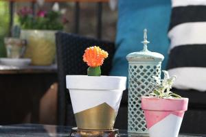 Diy Geometric Gold Spray Paint Painted Planter Tutorial