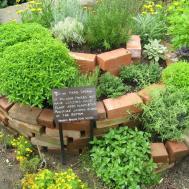Diy Herb Garden Ideas Vertical Indoor Gardening