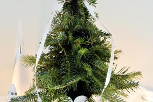 Diy Mini Christmas Tree Clippings Mom Music City