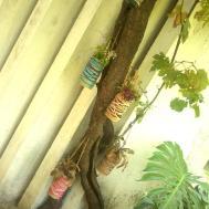 Diy Mini Hanging Garden Tree Make Vase