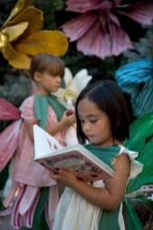 Diy Papier Mache Flowers Book Giveaway House