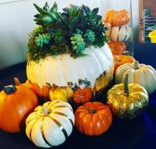 Diy Pumpkin Centerpiece Eat Craft Bake