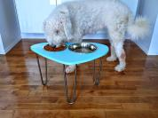 Diy Raised Dog Bowl Stand Mod 1960s Shape Hairpin