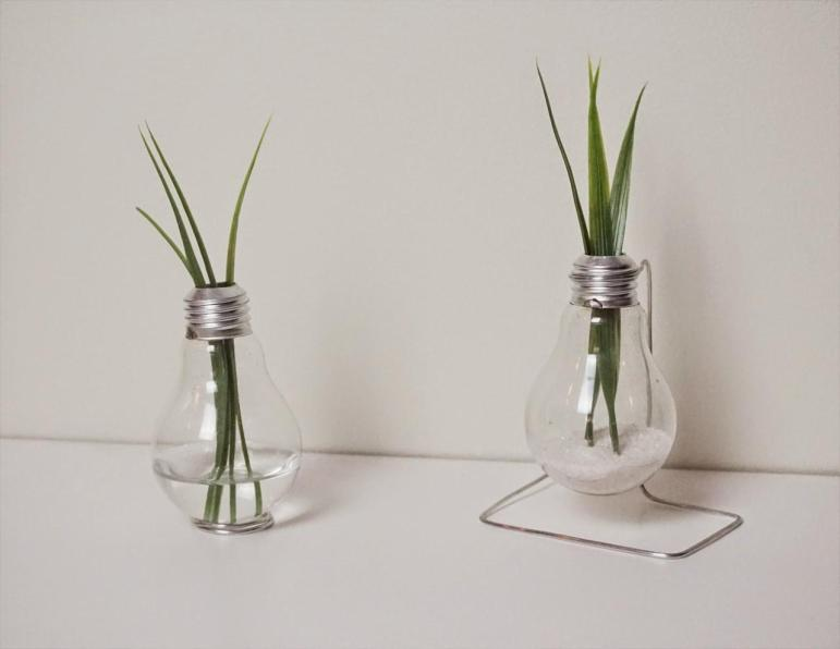 Diy Repurposed Light Bulb Vase Totally Green Crafts