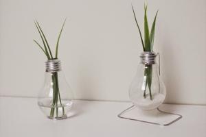 Diy Repurposed Light Bulb Vase Totally Green Crafts