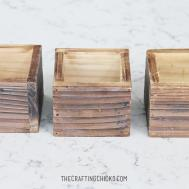 Diy Rustic Gold Succulent Planters Crafting Chicks