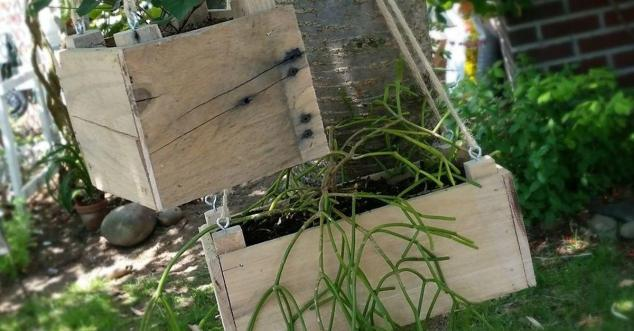 Diy Small Hanging Planter Pallet Wood Hometalk