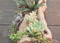 Diy Succulent Arrangement Howl