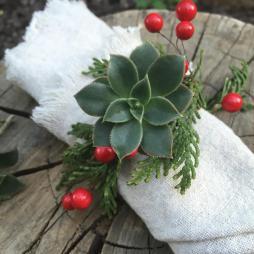 Diy Succulent Napkin Rings Modern Rustic Holiday
