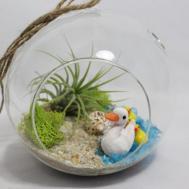 Diy Terrarium Kit Beach Scene Ducklings Miniature Garden