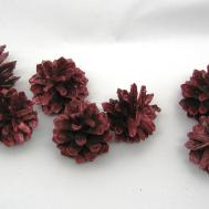 Dyed Natural Pine Cones Red Gold Painted Christmas