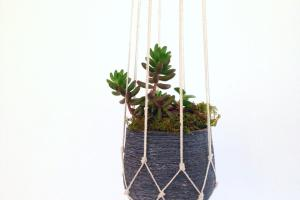 Easy Diy Macrame Plant Holder Spoonful Pretty