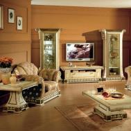 Elegant Living Room Ideas Doherty