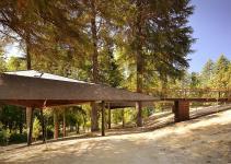 Elevated Tree Snake Houses Pedras Salgadas Portugal