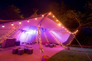 Festival Style 21st Birthday Party July