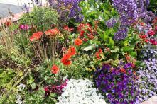 Flower Bed Ideas Beautiful Flowers