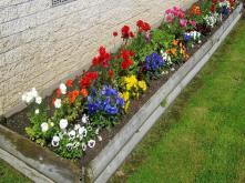 Flower Bed Ideas Small Excellent Idea Garden Brilliant