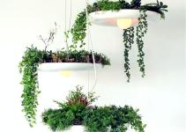 Hanging Pot Plant Lamp Droplight Fixture Pendant Ceiling