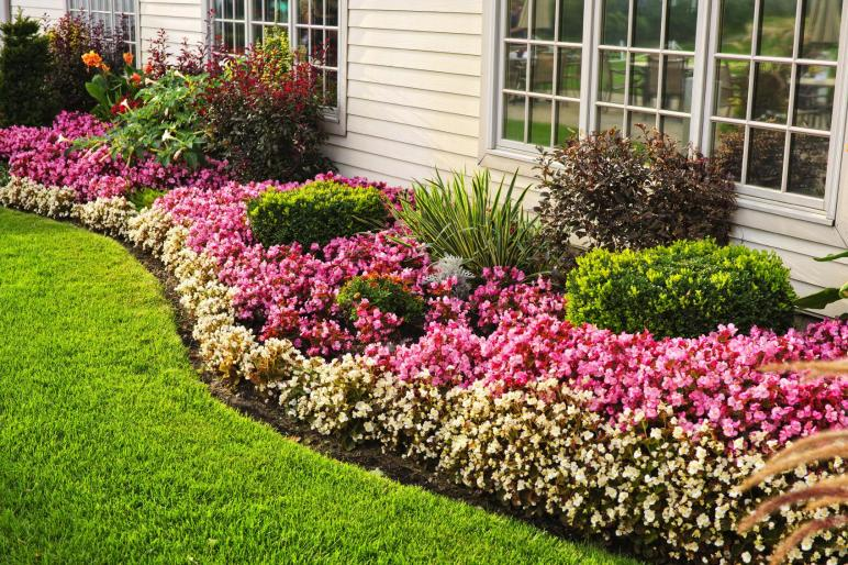 Have Flower Beds Add Colour Your Home Decorifusta