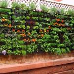 Herb Garden Inspiration Ideas Over Pots Planters