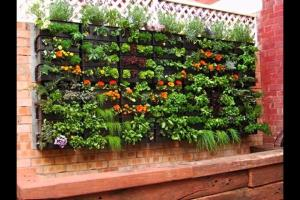 Herb Garden Inspiration Ideas Over Pots Planters