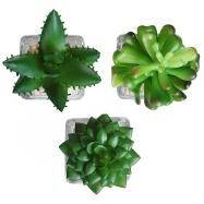 Home Accessories Greenery Plants Best Living Room
